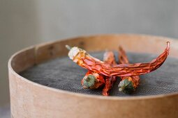 Dried chilli peppers on a flour sieve