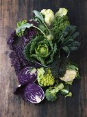 A still life featuring assorted cabbages
