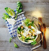 Salad Niçoise with chicken and hard-boiled egg