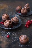 Chocolate cupcakes topped with chocolate frosting