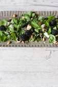 Salad with blackberries, parsley, honeydew melon and pine nuts