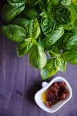 Fresh basil and dried tomatoes in olive oil