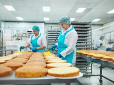 Workers spreading filling onto cakes in a cake factory