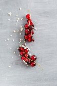 Chocolate-coated redcurrants and chopped almonds