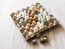 Various eggs in an egg box
