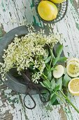 Elderflowers, lemons and a pair of scissors on a metal plate on a wooden table