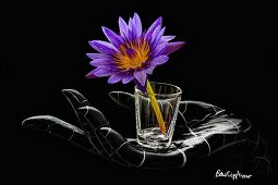 An artificial hand holding a glass with an exotic flower