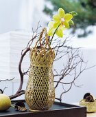 Oriental decoration ideas: An orchid flower in a woven vase