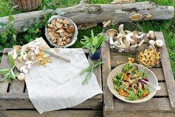 Stillleben mit frisch gesammelten Pilzen & Pilzgericht auf Holzkisten im Freien