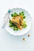 Black pudding wontons on a bed of salad