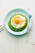 Macaroni egg on spinach cream