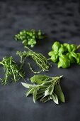 Fresh herbs on a dark surface