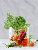 Pickled carrots with a bean and pea dip