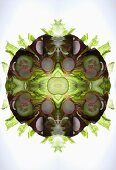 A digital composition of mirrored images of a mixed vegetable salad