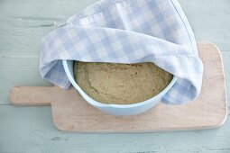 Gluten-free yeast dough proving