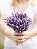 Woman holding bouquet of lavender