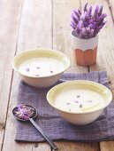 Cauliflower soup with lavender flowers