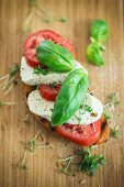 A slice of bread topped with tomatoes, vegan mozzarella and basil