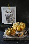 An autumnal arrangement of ornamental pumpkins and a picture of a bird