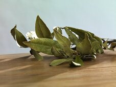 A sprig of dried bay leaves