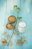 Glass of soya milk, dishes of soya beans and a sprig of soya beans