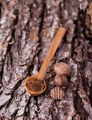 Nutmeg, whole and ground, with a wooden spoon on a piece of bark
