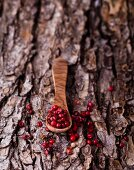 Red peppercorns on a wooden spoon on a piece of bark