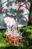 Refreshing drinks with drinking straws in bottle carrier on lawn