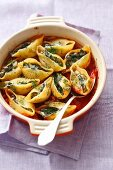 Conchiglie stuffed with spinach and quark in tomato sauce