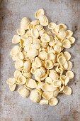 Fresh orecchiette pasta