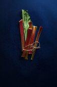 Chopped rhubarb stalks tied together
