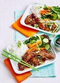 Fast Teriyaki Chicken with Rice