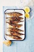 Spicy sardines with lemons