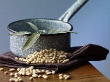 Small white beans and fresh sage on wooden table