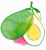 An illustration of a sliced avocado