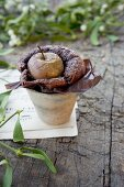 Chocolate cake with apple in an earthenware pot with a sprig of mistletoe on a piece of sheet music