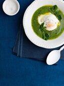 Brunnenkresse-Suppe mit pochiertem Ei
