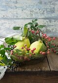 Quinces and spindle in a wire basket
