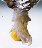 A raw egg falling into water for poaching
