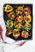Peppers filled with tomatoes