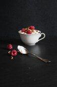 Raspberry quark dessert with buffalo worms