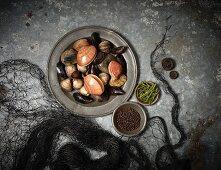 An arrangement of various fresh mussels