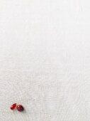 A carnelian and a jasper