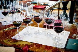Various glasses of wine on the table for tasting