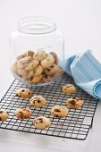 Apricot and Craisin Biscuits, Gluten Free
