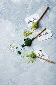 Organic matcha, chlorella and barley grass on ceramic spoons