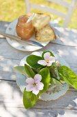 Quittenblüten auf Vintageteller, dahinter Quittenmarmelade und Weissbrot