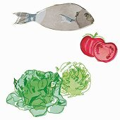 A fish, tomatoes and lettuce (illustration)