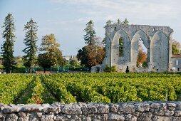 Les Grand murailles, Saint- Emilion, Bordeaux, Frankreich