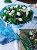 Kale salad with quail eggs and orange dressing